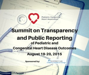 Summit on Transparency and Public Reporting