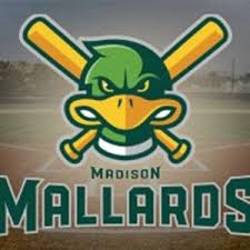 Night at the Mallards