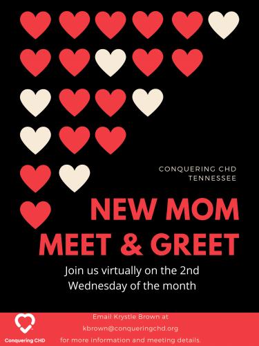 New Mom Meet & Greet
